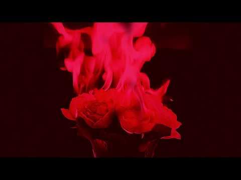 ROSES ON FIRE - Broken