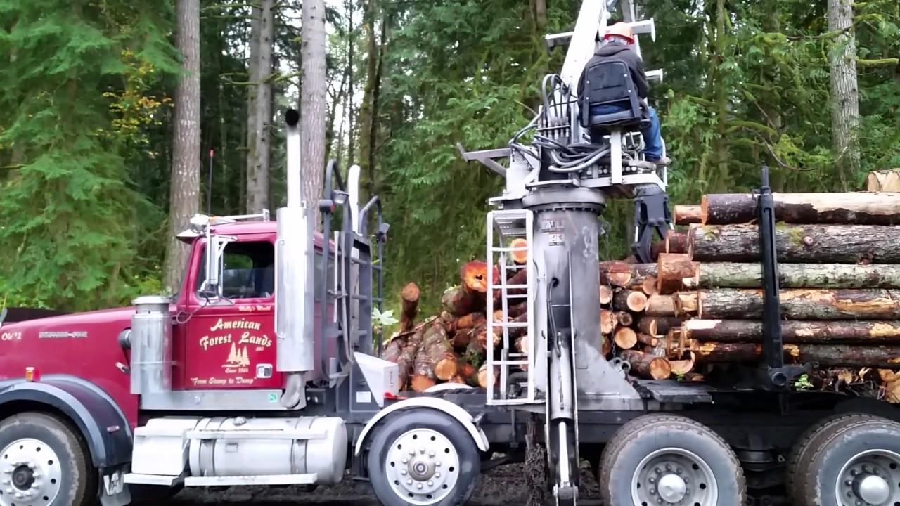 WE BUY TIMBER 1-800-LOG-ALOT Western Washington Logging
