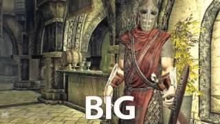 Приколы в Skyrim