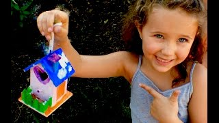 Learn English Colors and Shapes! Bird House with Sign Post Kids!