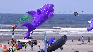 2019 Washington State International Kite Festival