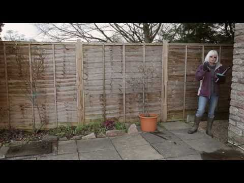 How to Measure Your Garden