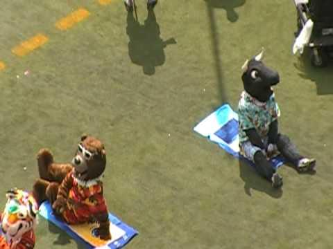 NFL Pro Bowl 2009 - NFL Mascots Sunbathing