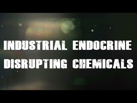 INDUSTRIAL related Endocrine Disrupting Chemical documentary