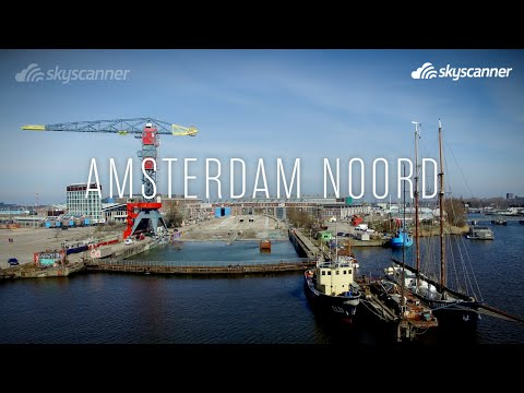 What to do in Amsterdam Noord: the ultimate hot-spot guide