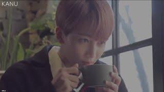[세븐틴/정한] 맥심 카누 디카페인 커피 CF 패러디