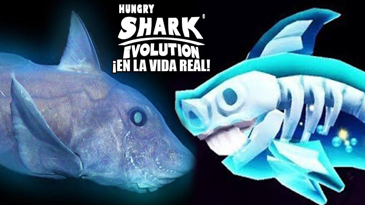 Hungry Shark Evolution TODOS LOS TIBURONES DEL JUEGO EN LA