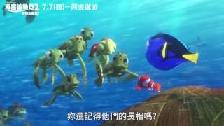 《海底總動員2:多莉去哪兒》精彩片段_暈龜篇 7月7日一同去遨游