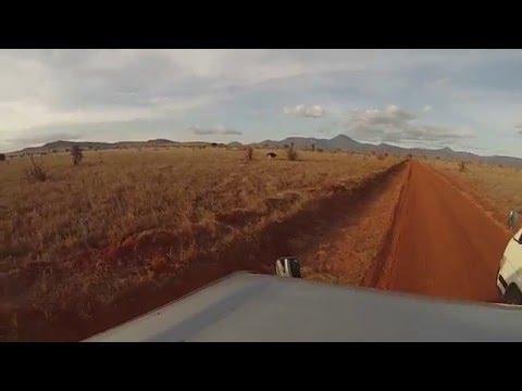 Kenya - Tsavo National Park