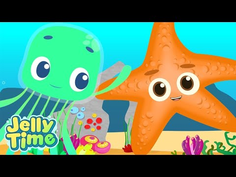 Jelly Time | Meet Starfish | Adventures Under The Sea | Funny Animation For Kids