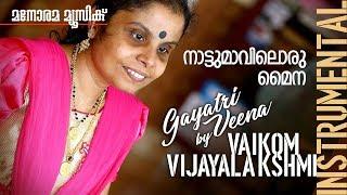 Nattumaviloru Maina film song on Gayathri Veena by Vaikom Vijayalaksmi