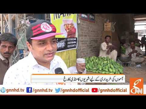 Mango starts making appearances in markets