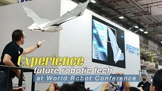 Live: Experience future robotic tech at World Robot Conference CGTN带你玩转2019世界机器人大会