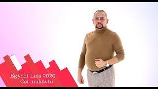 Egyedi Luis 2020- Csi mukávtu (Nem hagylak másnak) -Official ZGStudio video