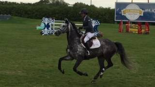Eclipse Equestrian at RMSJ 2016