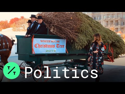 The Trumps Receive 2020 White House Christmas Tree Melania Trump Receives 2019 White House Christmas Tree   YouTube