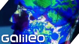Plötzlich Genie | Galileo | ProSieben