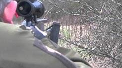 doe shot .243 hornady 95gr sst