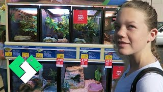 Shopping For Turtles
