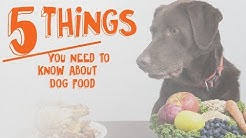 5 Things You Need to Know About Dog Food