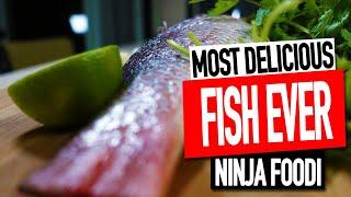 NINJA FOODI FISH RECIPE  SIMPLE BAKED FISH RECIPE  Salty Tales