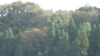 071028 ALFA MODEL チャンスボート F4U コルセア