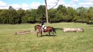 Situational Ethics cantering