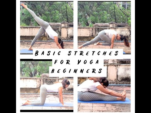 beginners yoga for weight loss  basic stretching