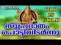 Download സുപ്രഭാതംപൊട്ടിവിടർന്നു | SuprabhathamPottividarnnu | Hindu Devotional Songs Malayalam |AyyappaSongs MP3 song and Music Video