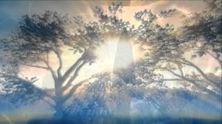 Steve Vai-Whispering A Prayer