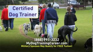 Become A Dog Trainer - Animal Behavior College Dog Obedience Program