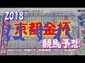【競馬予想】 2018 京都金杯 「1年の計は、金杯にあり!!!」