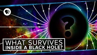 What Survives Inside A Black Hole?