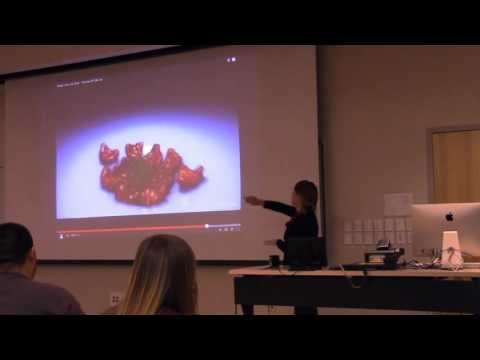 Dr. Holly Pinkart- The Ebola Virus and Current Epidemic