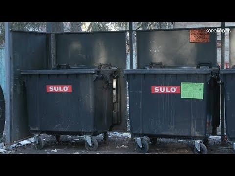 Штрафы за грязь: когда в Королёве наладят вывоз мусора по новой системе?