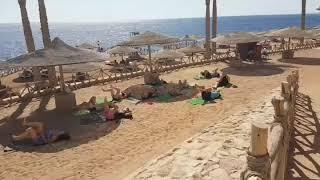видео Отзывы об отеле » Coral Beach Rotana Montazah  (Корал Бич Ротана Монтазах) 4* » Шарм Эль Шейх » Египет , горящие туры, отели, отзывы, фото