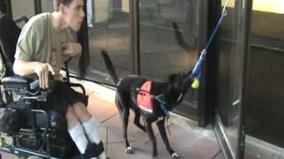 Paws Giving Independence- Service Dog Demo- Long Version- Http://givingindependence.org