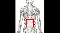 How to fix back pain with standing.