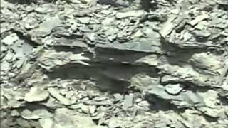 Formation of Natural Gas and Crude Oil - Part 1 of 6   MINING.com Video.flv
