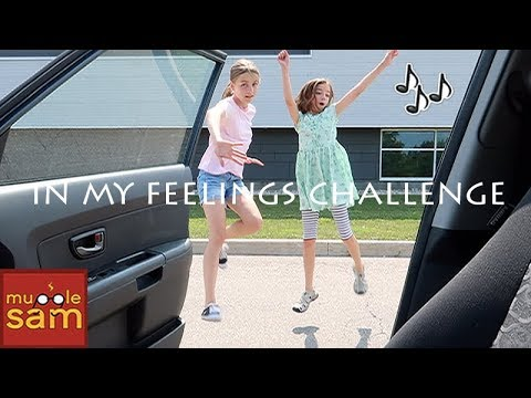 DRAKE - IN MY FEELINGS CHALLENGE 🎵 THE SHIGGY DANCE
