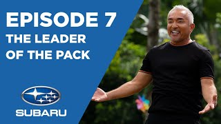 CESAR'S RECRUIT ASIA S3: EP.7  THE LEADER OF THE PACK