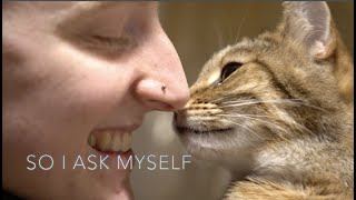 """""""IS IT OKAY TO HAVE A BAD DAY?""""  DocuMusic Trailer"""