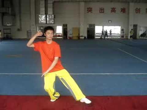 Wu yan nan- taijiquan