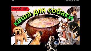 """Каша для собаки """"ЗДОРОВЬЕ"""". Лучший рецепт собачьей каши!!!"""
