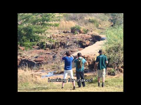University of Gloucestershire South Africa Field Trip 2014