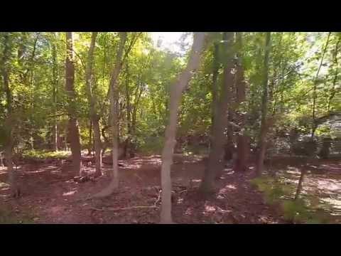 Rock Creek Park- DC