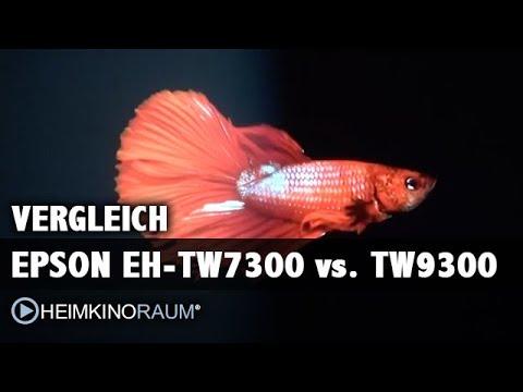 EPSON EH TW9300 vs EPSON EH TW7300 im Beamer-Test-Vergleich