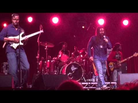 The Wailers - Waiting In Vain (Bluesfest 2016) HD 1080p