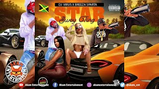 Dj Virus x Breeze Sparta - Star Bwoy Ting [Audio Visualizer]