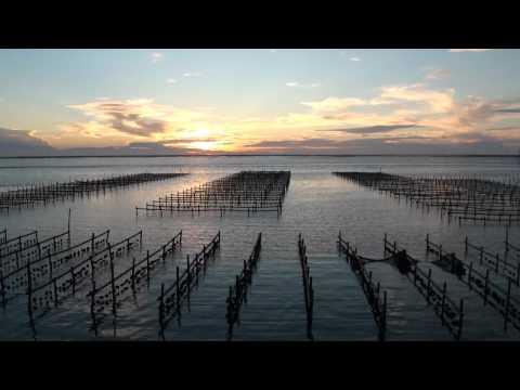 東石網寮夕陽搭配網寮漁港及漁船出海,頗有一番情趣。